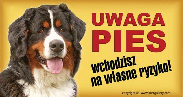 BERNESE MOUNTAIN DOG 01 - Tabliczka 28x15cm