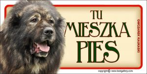 CAUCASIAN SHEPHERD DOG 02 - Tabliczka 18,5x9,5cm