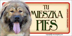 CAUCASIAN SHEPHERD DOG 03 - Tabliczka 18,5x9,5cm