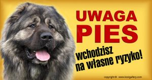 CAUCASIAN SHEPHERD DOG 04 - Tabliczka 28x15cm