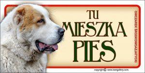 CENTRAL ASIAN SHEPHERD DOG 03 - Tabliczka 18,5x9,5cm