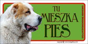 CENTRAL ASIAN SHEPHERD DOG 04 - Tabliczka 18,5x9,5cm