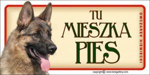GERMAN SHEPHERD DOG 02 - Tabliczka 18,5x9,5cm