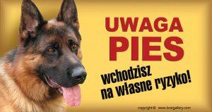 GERMAN SHEPHERD DOG 02 - Tabliczka 28x15cm