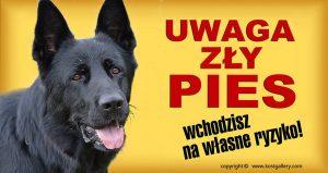 GERMAN SHEPHERD DOG 04 - Tabliczka 28x15cm