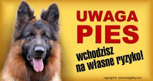GERMAN SHEPHERD DOG long-haired 06 - Tabliczka 28x15cm