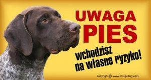 GERMAN SHORT_HAIRED POINTING DOG 01 - Tabliczka 28x15cm