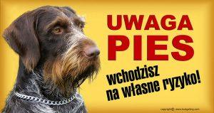 GERMAN WIRE_HAIRED POINTING DOG 01 - Tabliczka 28x15cm