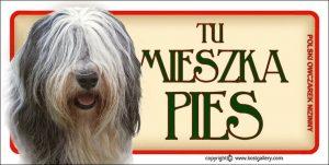 POLISH LOWLAND SHEEPDOG 01 - Tabliczka 18,5x9,5cm