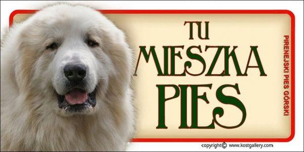 PYRENEAN MOUNTAIN DOG 01 - Tabliczka 18,5x9,5cm