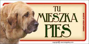 SPANISH MASTIFF 01 - Tabliczka 18,5x9,5cm