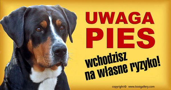 SWISS MOUNTAIN DOG 02 - Tabliczka 28x15cm
