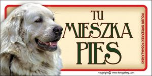 TATRA SHEPHERD DOG 02 - Tabliczka 18,5x9,5cm