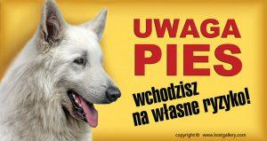 WHITE SWISS SHEPHERD DOG 02 - Tabliczka 28x15cm
