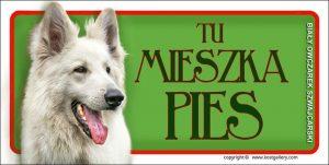 WHITE SWISS SHEPHERD DOG 04 - Tabliczka 18,5x9,5cm