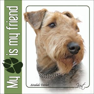 AIREDALE TERRIER 01 - Nalepka 14x14cm