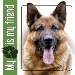 GERMAN SHEPHERD DOG 01 - Nalepka 14x14cm