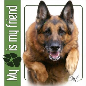 GERMAN SHEPHERD DOG 03 - Nalepka 14x14cm