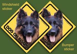 GERMAN SHEPHERD DOG LONG-HAIRED 02 - Nalepka 11,5x11,5cm