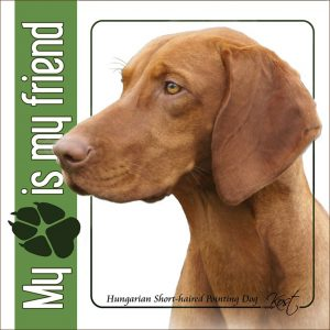 HUNGARIAN SHORT-HAIRED POINTING DOG 01 - Nalepka 14x14cm