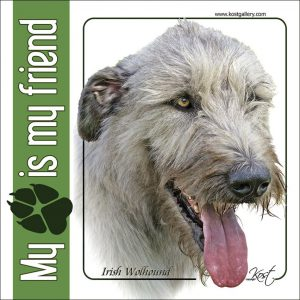 IRISH WOLFHOUND 01 - Nalepka 14x14cm