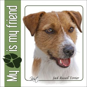 JACK RUSSELL TERRIER 01 - Nalepka 14x14cm