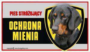 POLISH HUNTING DOG 01 - Tabliczka 25x15cm