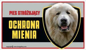PYRENEAN MOUNTAIN DOG 01 - Tabliczka 25x15cm
