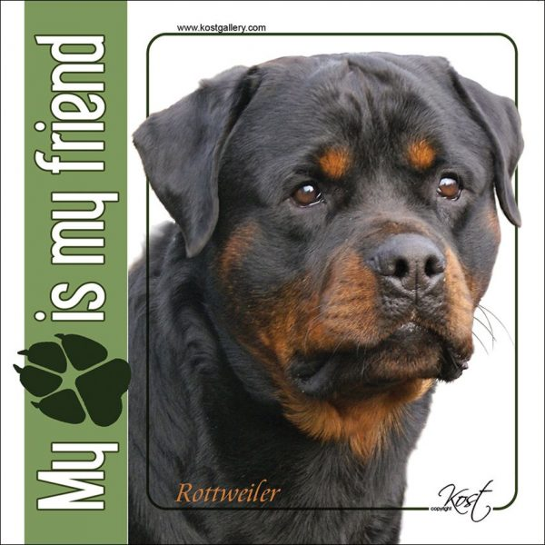 ROTTWEILER 01 - Nalepka 14x14cm