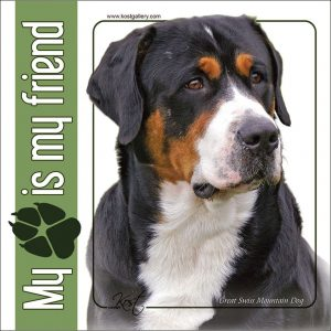 SWISS MOUNTAIN DOG 01 - Nalepka 14x14cm