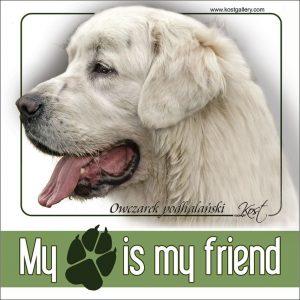 TATRA SHEPHERD DOG 01 - Nalepka 14x14cm