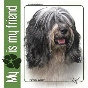 TIBETAN TERRIER 02 - Nalepka 14x14cm