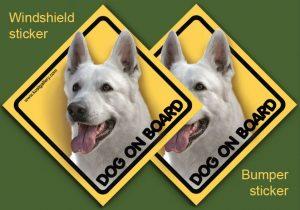 WHITE SWISS SHEPHERD DOG 01 - Nalepka 11,5x11,5cm