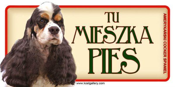 AMERICAN COCKER SPANIEL - Tabliczka 18,5x9,5cm.jpg