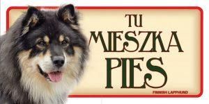 FINISH LAPPHUND (Fiński Lapphund) - Tabliczka 18,5x9,5cm