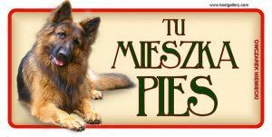 GERMAN SHEPHERD DOG LONG HAIRED - Tabliczka 18,5x9,5cm.jpg