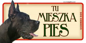 GREAT DANE (DOG NIEMIECKI) 04 - Tabliczka 18,5x9,5cm.jpg