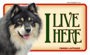 FINNISH LAPPHUND – Tabliczka 18x11cm
