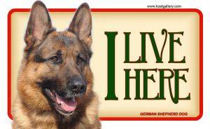 GERMAN SHEPHERD DOG 02 – Tabliczka 18x11cm
