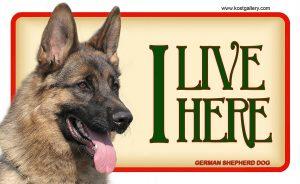 GERMAN SHEPHERD DOG 03 – Tabliczka 18x11cm