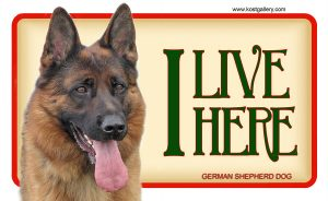GERMAN SHEPHERD DOG 04 – Tabliczka 18x11cm