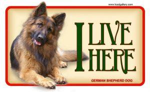 GERMAN SHEPHERD DOG LONG HAIRED 02 – Tabliczka 18x11cm
