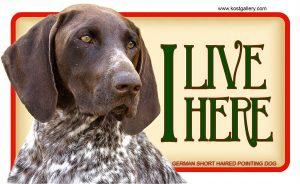 GERMAN SHORT HAIRED POINTING DOG 02 – Tabliczka 18x11cm