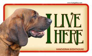 HANOVERIAN SCENTHOUND – Tabliczka 18x11cm