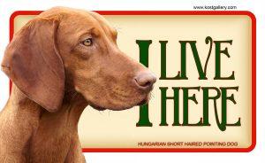 HUNGARIAN SHORT HAIRED POINTING DOG – Tabliczka 18x11cm