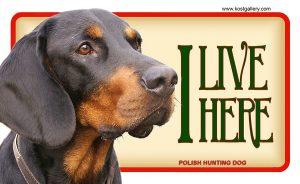 POLISH HUNTING DOG – Tabliczka 18x11cm